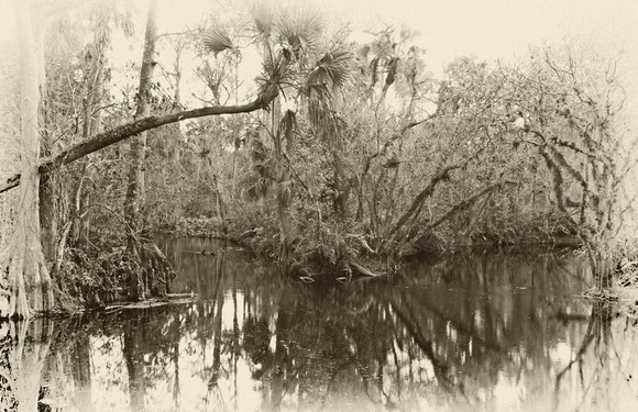 Loxahatchee River X